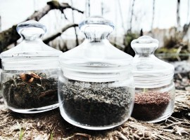 Три вида чая для трех разных состояний. К наступлению кофе-паузы они вам очень пригодятся